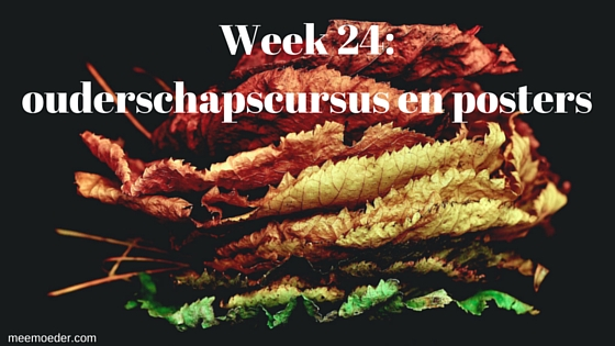 'Week 24: ouderschapscursus en posters' In week 24 hebben we er een luieremmer bij, gaan we weer naar de ouderschapscursus, kunnen we zelf posters printen en gaan we op vakantie. Lees het snel op http://meemoeder.com/week-24/
