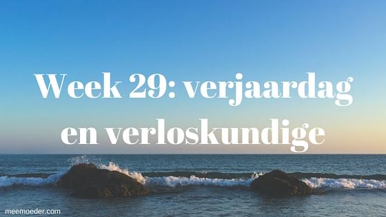 """""""Week 29: verjaardag en verloskundige"""" In week 29 worden we verwend door het koken van onze vrienden, bezoeken we de verloskundige, ga ik shoppen en ben ik jarig. Lees snel verder op http://www.meemoeder.com/week-29"""
