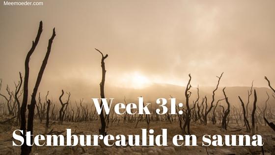 'Week 31: Stembureaulid en sauna' In week 31 ontvangen we de Bébé-Jou thermometer, ben ik stembureaulid, bezoek ik de sauna, gaat mijn vrouw naar Pilates en schrijf ik mij uit bij mijn kerk. Lees het op www.meemoeder.com/week-31