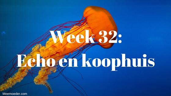 'Week 32: Echo en koophuis' In week 32 bezoeken we de verloskundige, hebben we weer een echo en kopen we zomaar een huis. Lees verder op: http://meemoeder.com/week-32