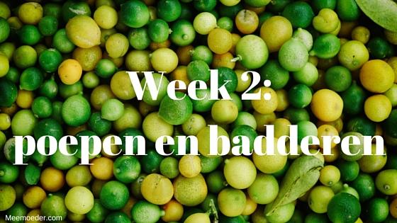 'Week 2: poepen en badderen' In week 2 zien we de eerste grote poepluiers, proberen we de tummy tub, merken we dat huid-op-huidcontact met de baby inderdaad voor mooie ontspanning zorgt, gaan we weer naar buiten en nemen we afscheid van de kraamverzorgster. Lees het op http://meemoeder.com/week-2-poepen-en-badderen/