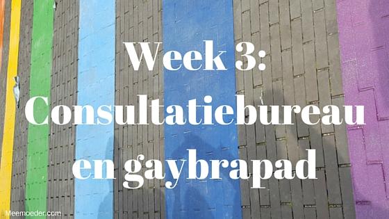 'Week 3: Consultatiebureau en gaybrapad' In week 3 gaan we naar het inloopspreekuur van het consultatiebureau om onze zoon te wegen, stappen we met de flessen en flesvoeding over naar een ander merk, zijn we bij de onthulling van het Haagse gaybrapad en pakken we een terrasje. Lees het op http://www.meemoeder.com/week-3-consultatiebureau-en-gaybrapad!