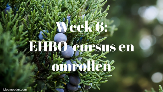 'Week 6: EHBO-cursus en omrollen' In week 6 boeken we een city trip, regelen we de verhuizing, volgen we een EHBO-cursus, rolt Sebastiaan zich voor het eerst om, bezoeken we het Haags Historisch Museum, moeten we maat 62 wassen en maak ik een salade van ingrediënten uit mijn moestuin. Lees het snel op http://meemoeder.com/week-6-ehbo-cursus-en-omrollen!