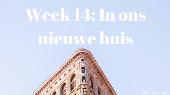 'Week 14: In ons nieuwe huis' In week 14 klust Sebastiaan zich in de rondte in het nieuwe huis, maakt hij een hoop geluid en gaat hij wennen bij de kinderopvang. Lees het snel op http://meemoeder.com/week-14-nieuwe-huis/!