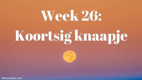 'Week 26: Koortsig knaapje' In week 26 is Sebastiaan maar een koortsig knaapje. Hij hoest veel, geeft veel over en huilt veel. Uiteindelijk blijkt het toch Bronchitis te zijn. Lees het snel op http://bit.ly/Wk26Br