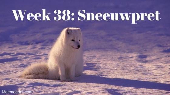'Week 38: Sneeuwpret' Sebastiaan voelde zich deze week niet zo lekker, maar zijn mama's hebben sneeuwpret gehad. Lees het hier: http://bit.ly/Wk38Sneeuw