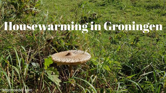 'Housewarming in Groningen' Sebastiaan bezoekt deze week met zijn mama's een housewarming in Groningen en gaat wandelen in het Noordlaarder Bos. Lees het hier: http://bit.ly/HWGrunn