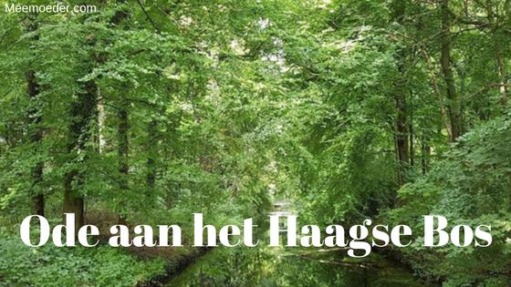 'Ode aan het Haagse Bos' We gaan regelmatig met onze peuter gaan wandelen in het Haagse Bos. We genieten daar enorm van! In deze blog leg ik je wat meer uit over de achtergrond van het Haagse Bos, vertel ik wat over Paleis Huis ten Bosch en speelbos Robin Hood en laat ik je de mooiste plekjes zien met foto's: http://bit.ly/HaagseBos