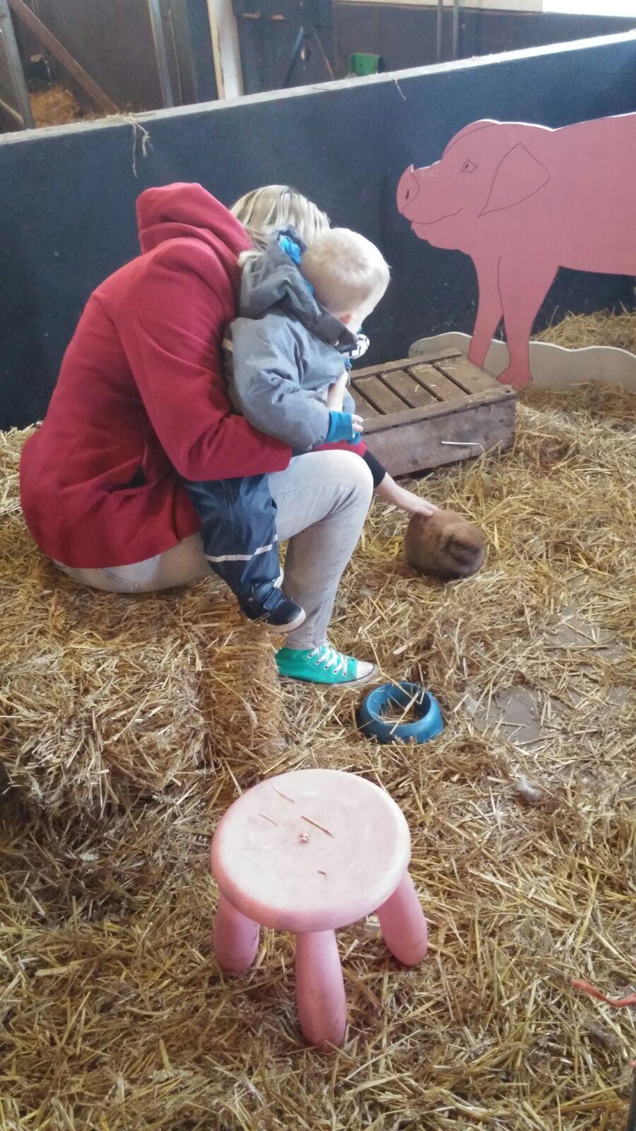 'Op bezoek bij de stadsboerderij in Leidschenveen' Sebastiaan bezoekt voor het eerst in zijn leven een stadsboerderij. Geiten, konijnen, kippen, een koe: hij vindt het allemaal prima, maar dat hooi… Lees het hier: http://bit.ly/StadsboerderijLV